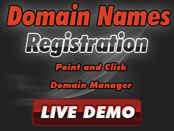 Budget domain name registration services
